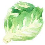Brussels_sprouts_pic