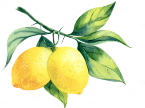 Natural ingredients - Lemon